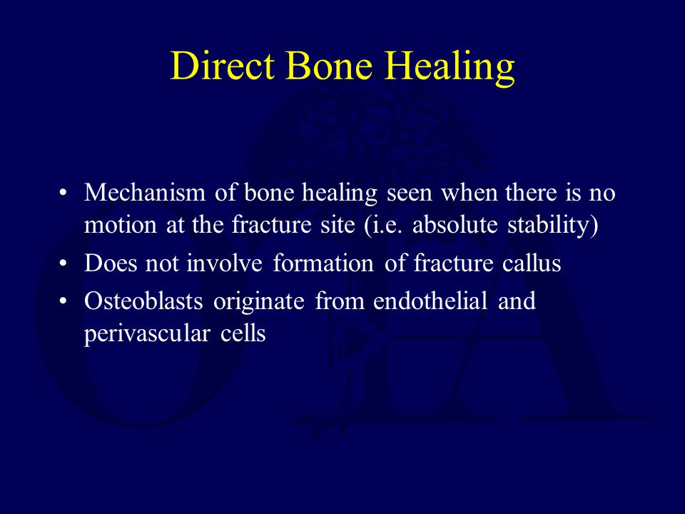 Direct Bone Healing Mechanism of bone healing seen when there is no motion at the fracture site (i.e.