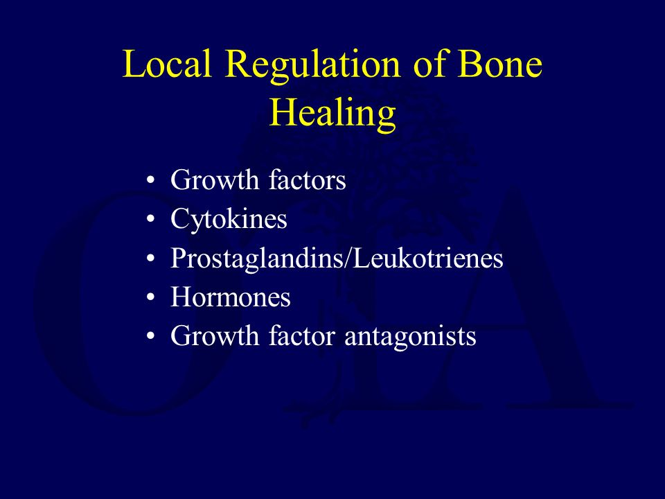 Local Regulation of Bone Healing Growth factors Cytokines Prostaglandins/Leukotrienes Hormones Growth factor antagonists