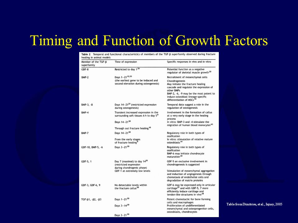 Timing and Function of Growth Factors Table from Dimitriou, et al., Injury, 2005