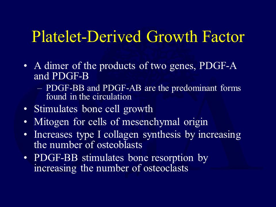 Platelet-Derived Growth Factor A dimer of the products of two genes, PDGF-A and PDGF-B –PDGF-BB and PDGF-AB are the predominant forms found in the circulation Stimulates bone cell growth Mitogen for cells of mesenchymal origin Increases type I collagen synthesis by increasing the number of osteoblasts PDGF-BB stimulates bone resorption by increasing the number of osteoclasts