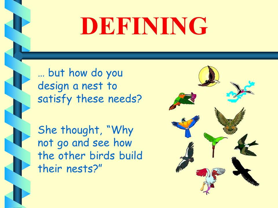 DEFINING … but how do you design a nest to satisfy these needs.