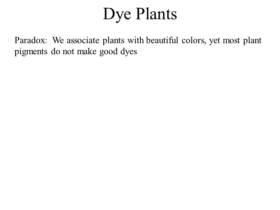 Dye Plants Paradox: We associate plants with beautiful colors, yet most plant pigments do not make good dyes