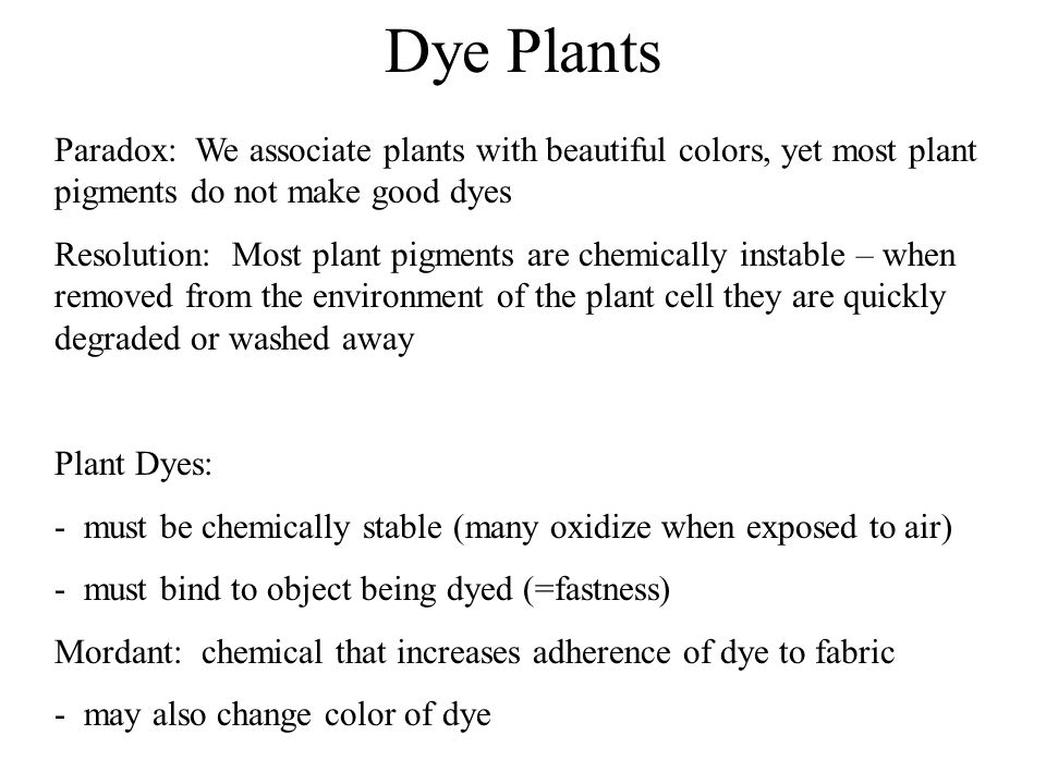 Dye Plants Paradox: We associate plants with beautiful colors, yet most plant pigments do not make good dyes Resolution: Most plant pigments are chemi