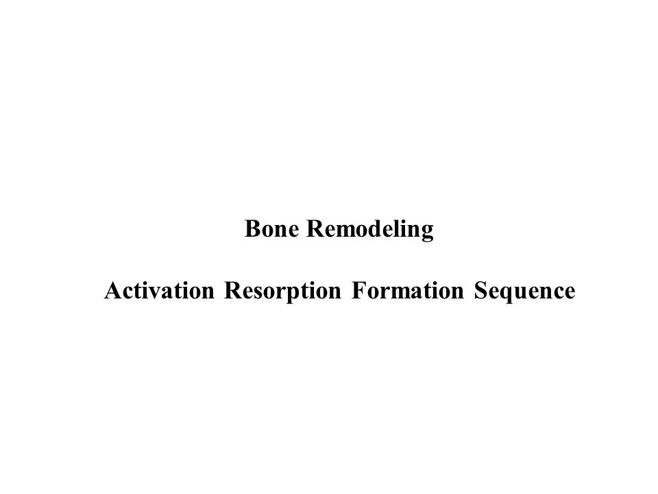 Bone Remodeling Activation Resorption Formation Sequence