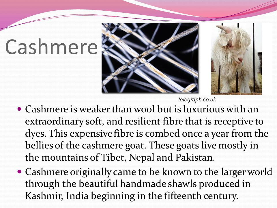 Cashmere Cashmere is weaker than wool but is luxurious with an extraordinary soft, and resilient fibre that is receptive to dyes.
