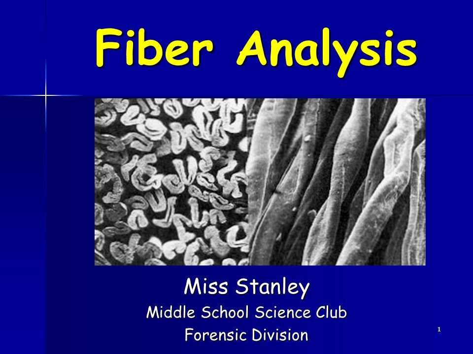 1 Fiber Analysis Miss Stanley Middle School Science Club Forensic Division