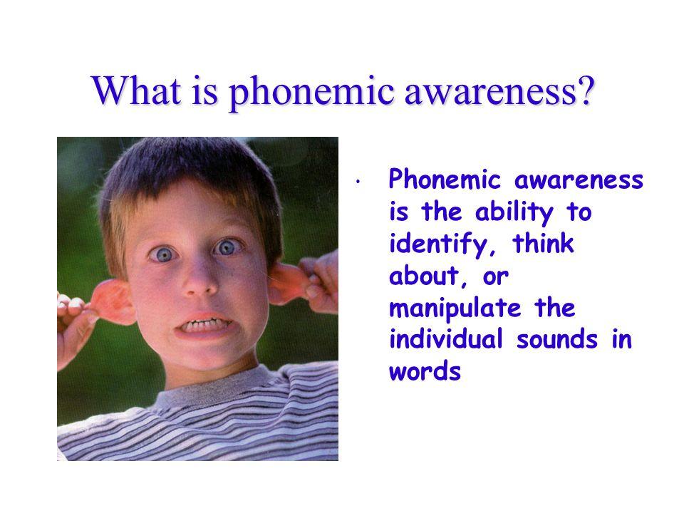 What is phonemic awareness.