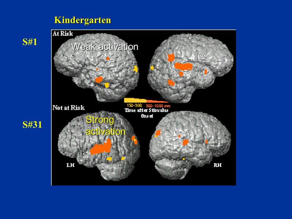 S#1 S#31 Kindergarten Weak activation Strong activation