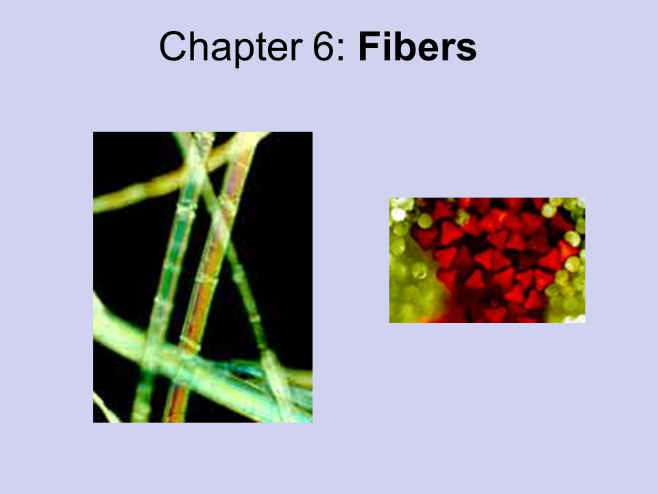 12 Fibers All fibers are made of polymers which are long chains of repeating units.
