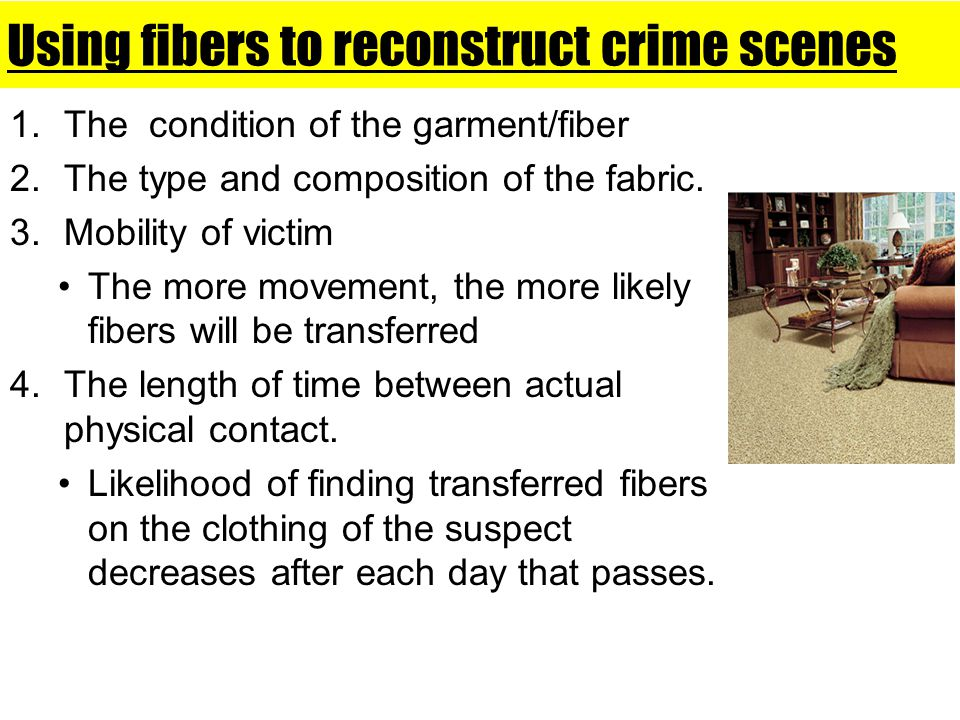 Using fibers to reconstruct crime scenes 1.The condition of the garment/fiber 2.The type and composition of the fabric. 3.Mobility of victim The more