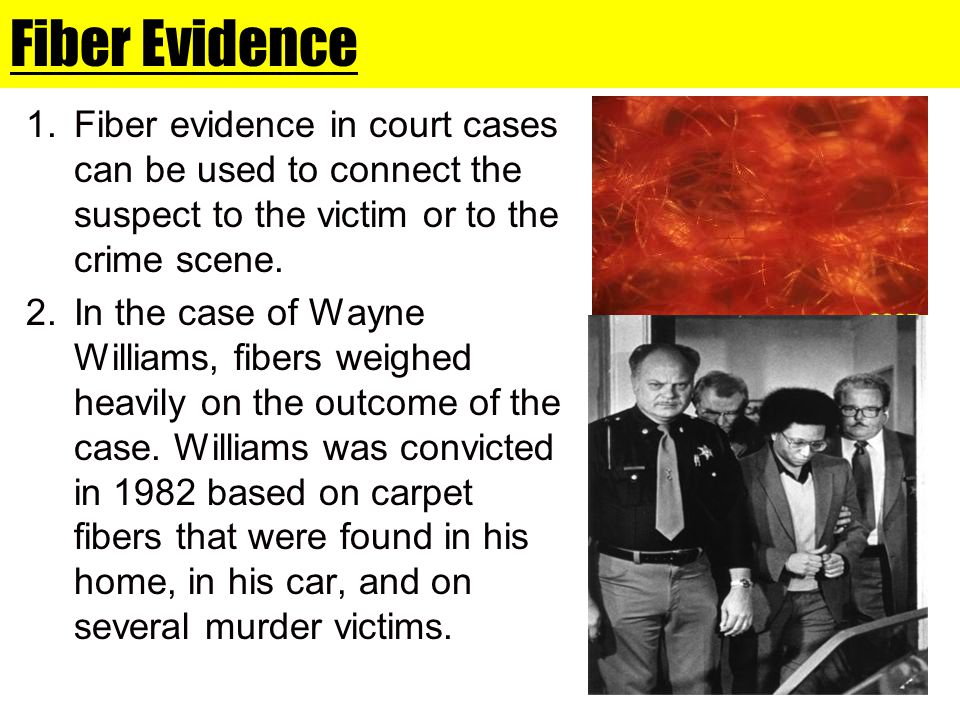 Fiber Evidence 1.Fiber evidence in court cases can be used to connect the suspect to the victim or to the crime scene. 2.In the case of Wayne Williams