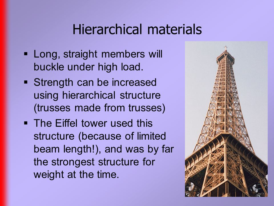 Hierarchical materials  Long, straight members will buckle under high load.