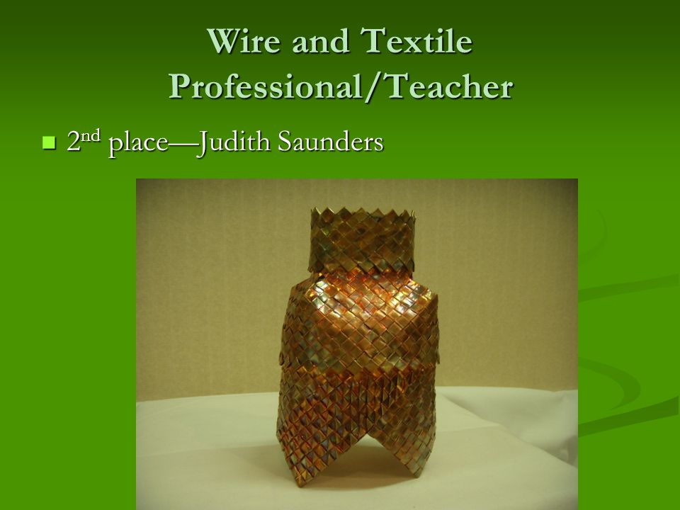 Wire and Textile Professional/Teacher 2 nd place—Judith Saunders 2 nd place—Judith Saunders