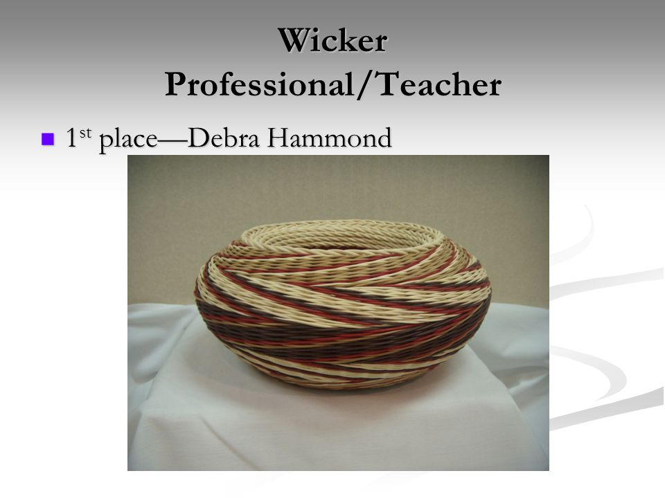 Wicker Professional/Teacher 1 st place—Debra Hammond 1 st place—Debra Hammond