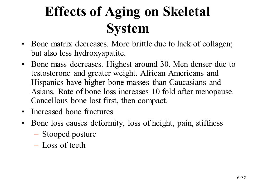 6-38 Effects of Aging on Skeletal System Bone matrix decreases.