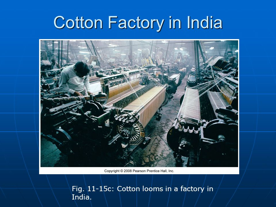 Cotton Factory in India Fig. 11-15c: Cotton looms in a factory in India.