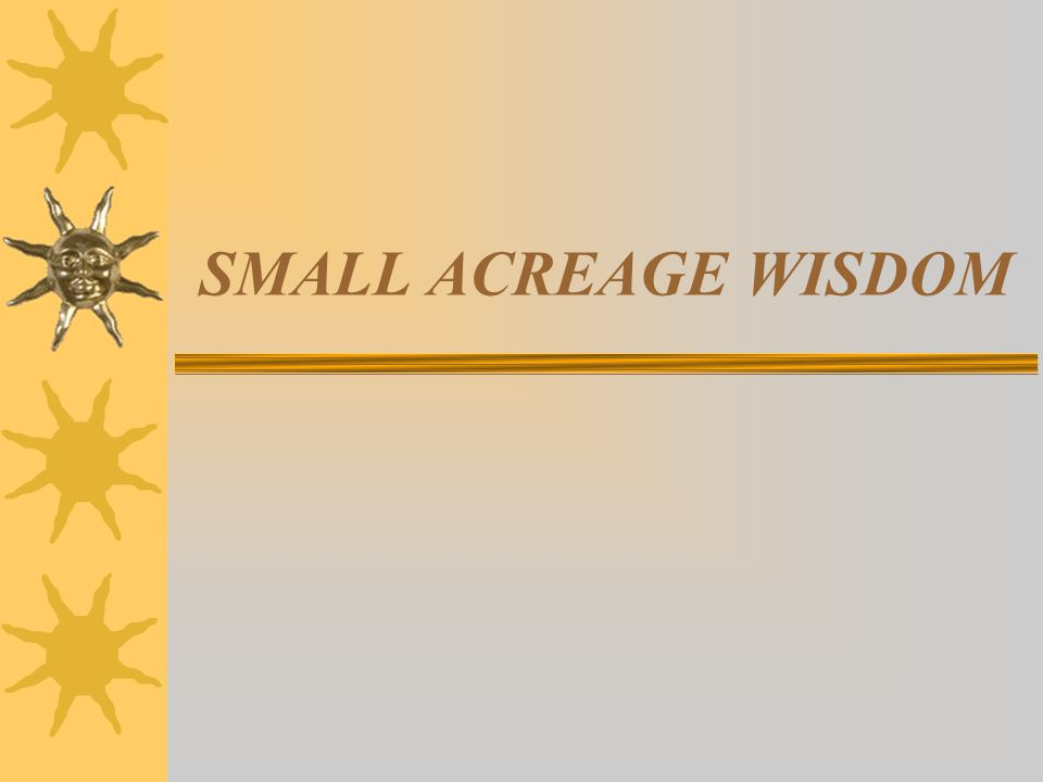 Small Acreage Wisdoms  Do things RIGHT THE FIRST TIME  Make sure You are Having Fun  Know when to QUIT  Keep the costs under control-budget