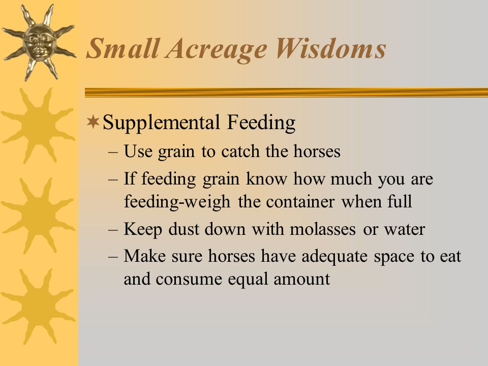 Small Acreage Wisdoms  Supplemental Feeding –Use grain to catch the horses –If feeding grain know how much you are feeding-weigh the container when full –Keep dust down with molasses or water –Make sure horses have adequate space to eat and consume equal amount