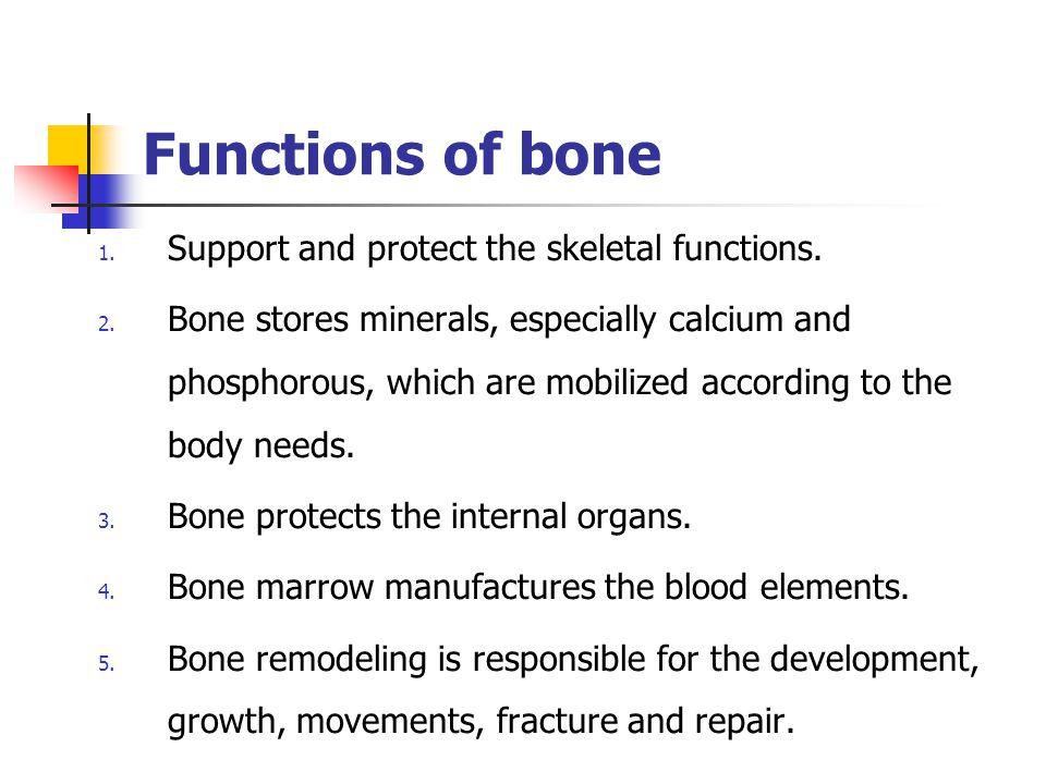 Alveolar bone In X-ray the cribriform plate is referred to lamina dura.