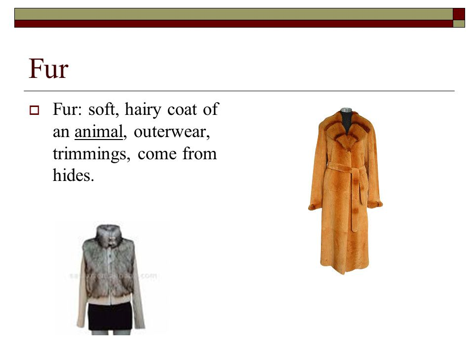 Fur  Fur: soft, hairy coat of an animal, outerwear, trimmings, come from hides.
