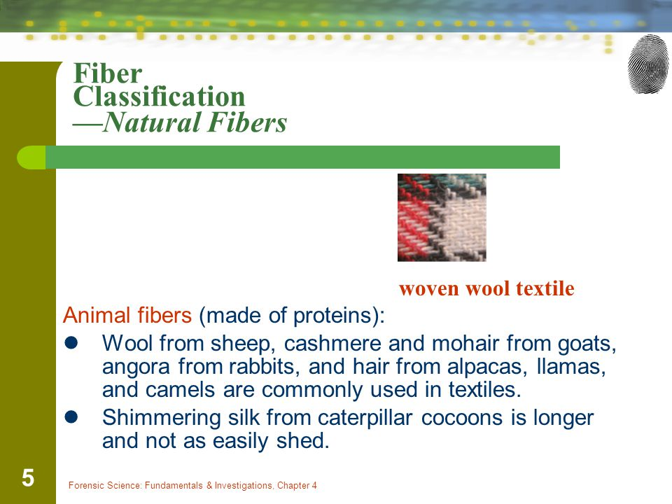 Forensic Science: Fundamentals & Investigations, Chapter 4 5 Fiber Classification —Natural Fibers woven wool textile Animal fibers (made of proteins): Wool from sheep, cashmere and mohair from goats, angora from rabbits, and hair from alpacas, llamas, and camels are commonly used in textiles.