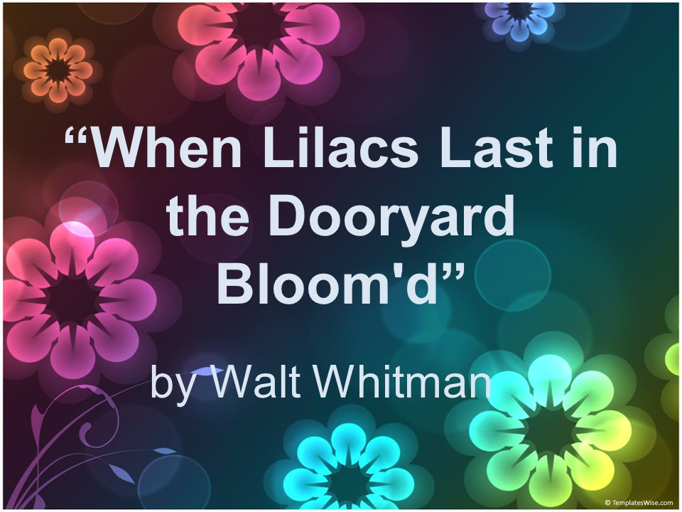 When Lilacs Last in the Dooryard Bloom d by Walt Whitman