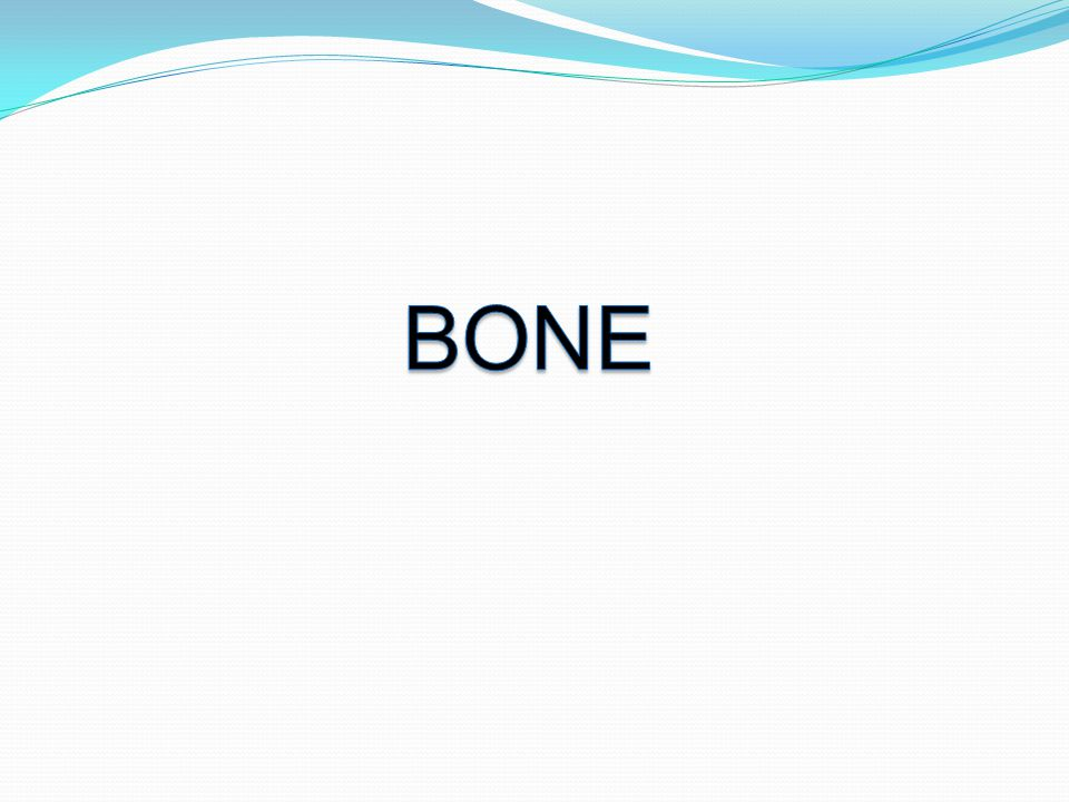 Bone is a specialized form of connective tissue.