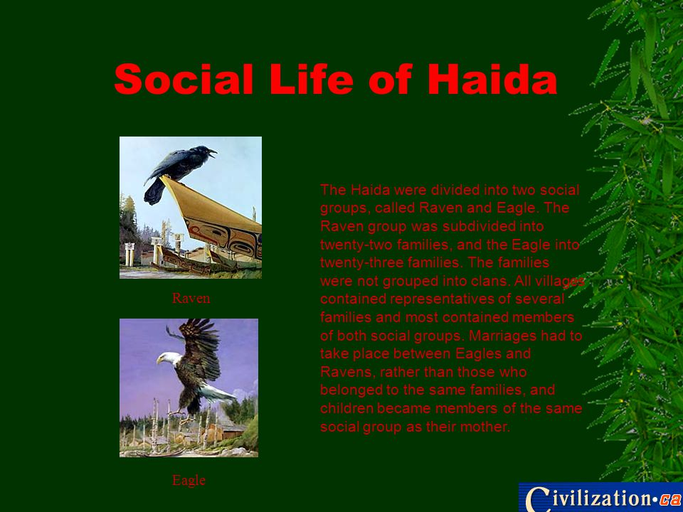 Social Life of Haida The Haida were divided into two social groups, called Raven and Eagle.
