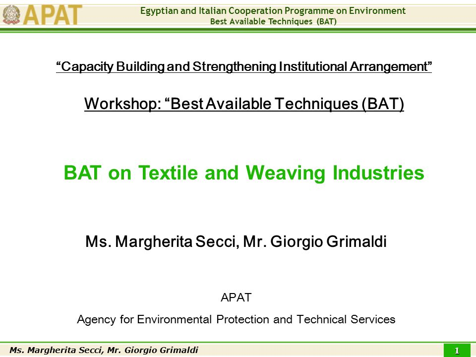 Egyptian and Italian Cooperation Programme on Environment Best Available Techniques (BAT) Ms.