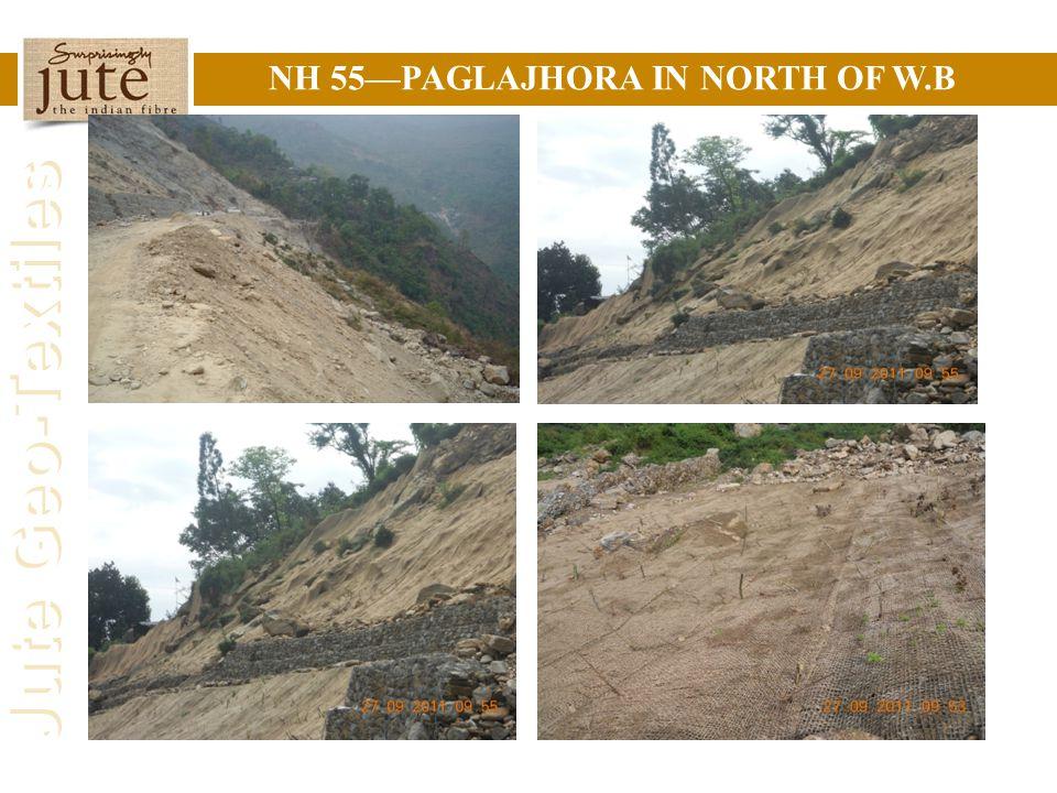 Jute Geo-Textiles NH 55—PAGLAJHORA IN NORTH OF W.B