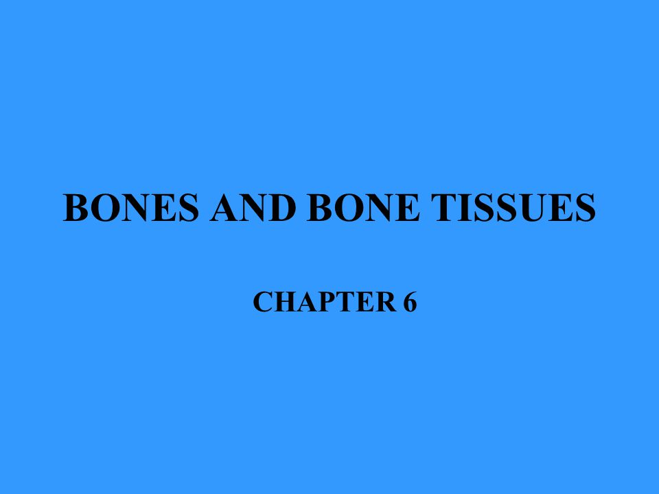 BONES AND BONE TISSUES CHAPTER 6