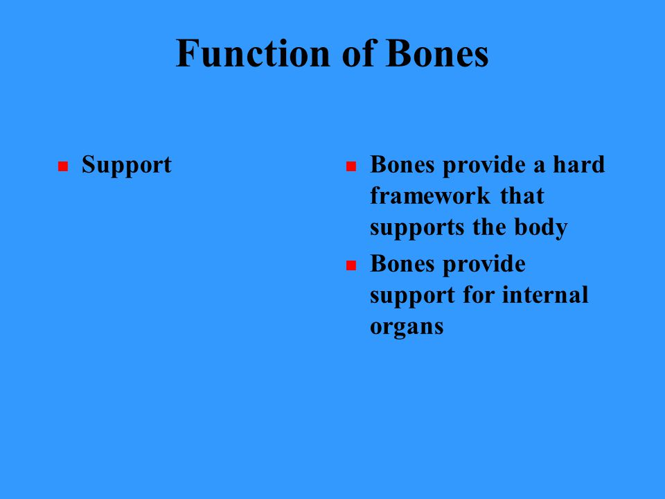 Function of Bones Support Bones provide a hard framework that supports the body Bones provide support for internal organs