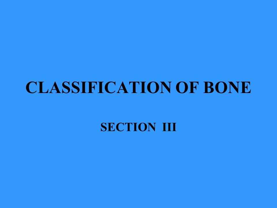CLASSIFICATION OF BONE SECTION III