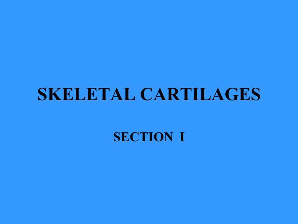SKELETAL CARTILAGES SECTION I