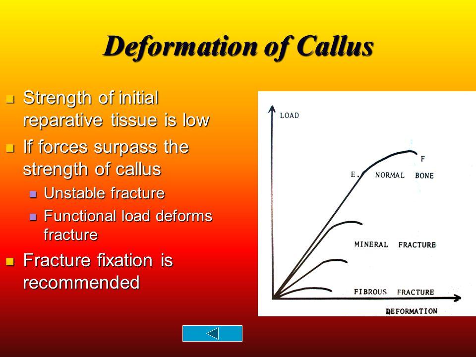 Deformation of Callus Strength of initial reparative tissue is low Strength of initial reparative tissue is low If forces surpass the strength of call
