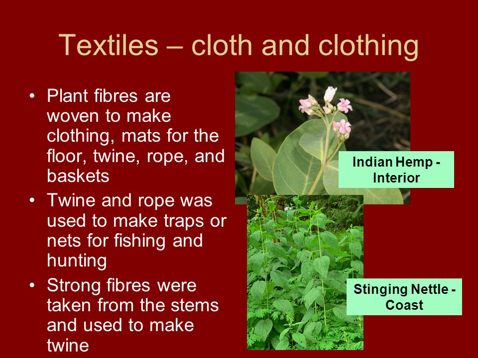 More on Textiles Baskets were also woven from cedar bark, spruce roots, reeds or grasses Some were used to carry water or liquids and had to be woven very, very tightly and sometimes sealed by resin Others were made loosely, to allow water to flow out