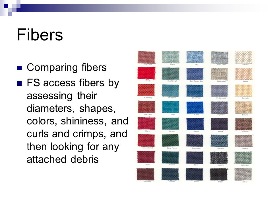 Fibers Comparing fibers FS access fibers by assessing their diameters, shapes, colors, shininess, and curls and crimps, and then looking for any attached debris