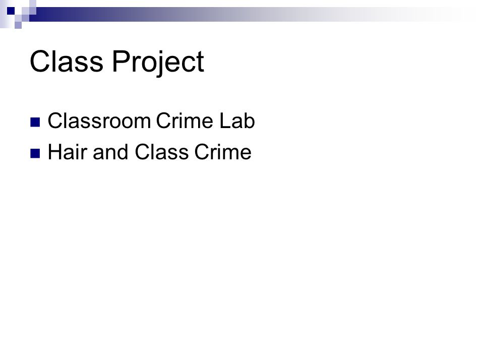 Class Project Classroom Crime Lab Hair and Class Crime