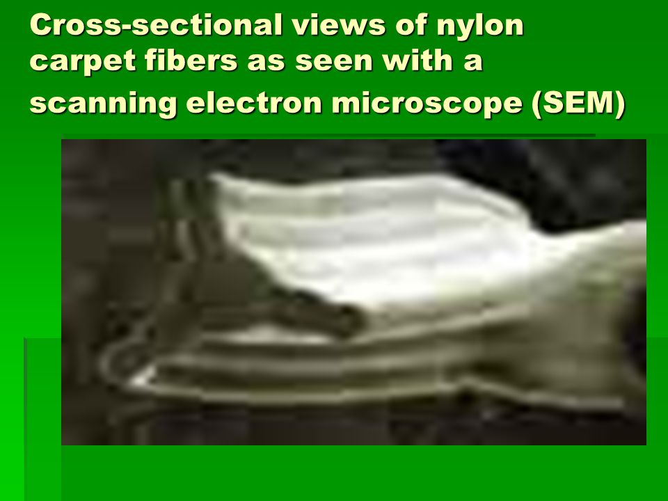 Cross-sectional views of nylon carpet fibers as seen with a scanning electron microscope (SEM)