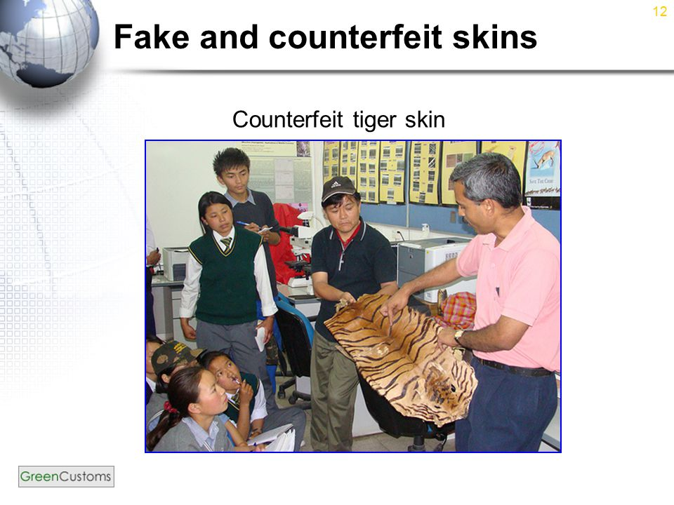12 Fake and counterfeit skins Counterfeit tiger skin