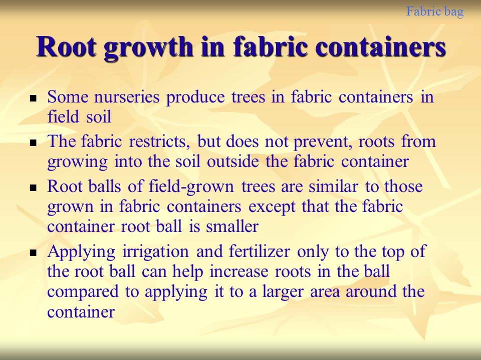 Fabric bag Root growth in fabric containers Some nurseries produce trees in fabric containers in field soil The fabric restricts, but does not prevent