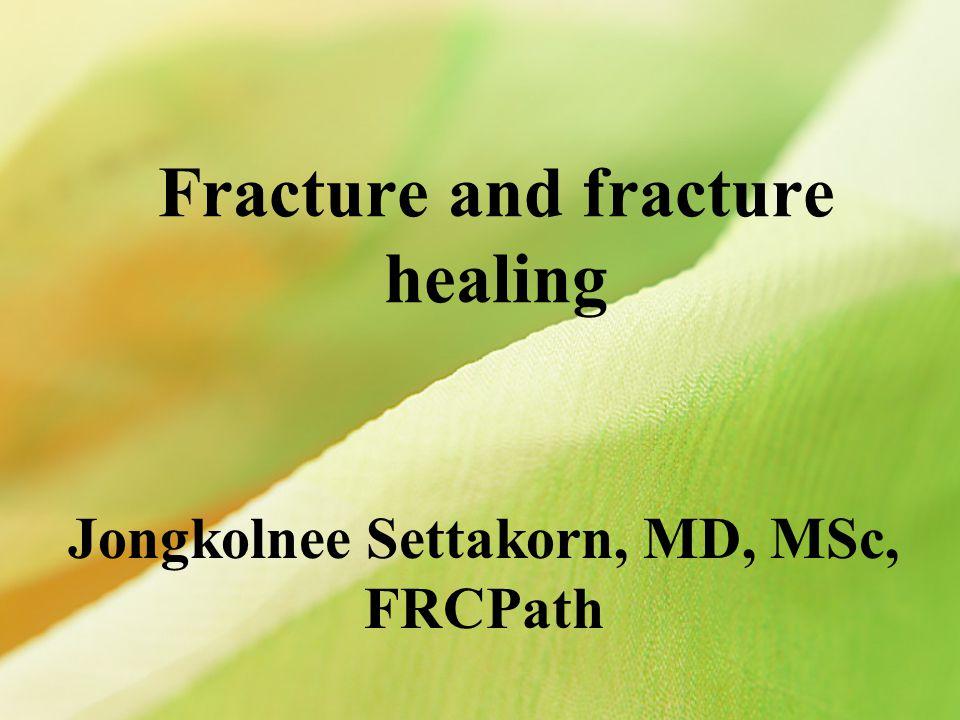 Fracture and fracture healing Jongkolnee Settakorn, MD, MSc, FRCPath