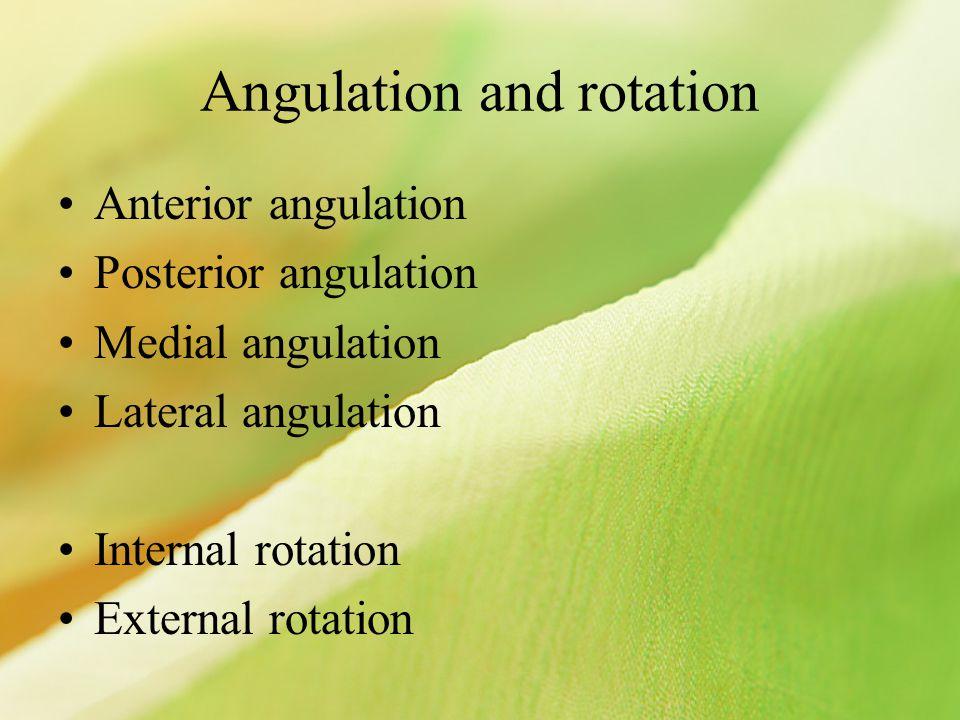 Angulation and rotation Anterior angulation Posterior angulation Medial angulation Lateral angulation Internal rotation External rotation