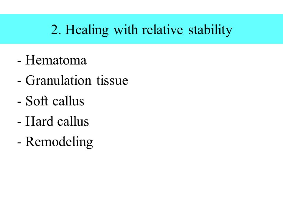 2. Healing with relative stability - Hematoma - Granulation tissue - Soft callus - Hard callus - Remodeling