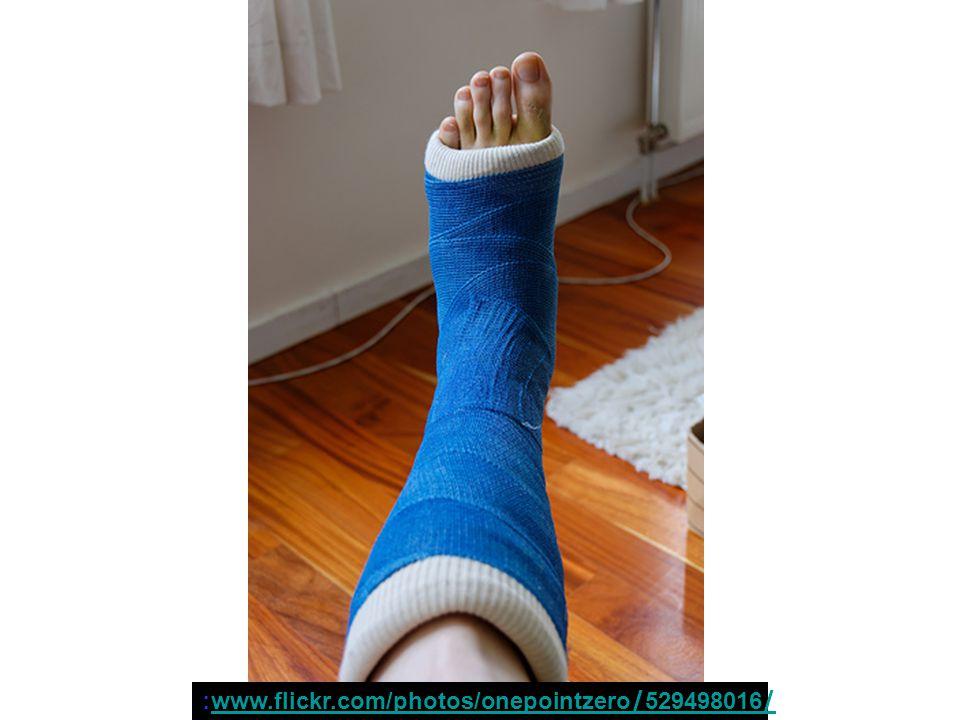 :www.flickr.com/photos/onepointzero/529498016/www.flickr.com/photos/onepointzero/529498016/
