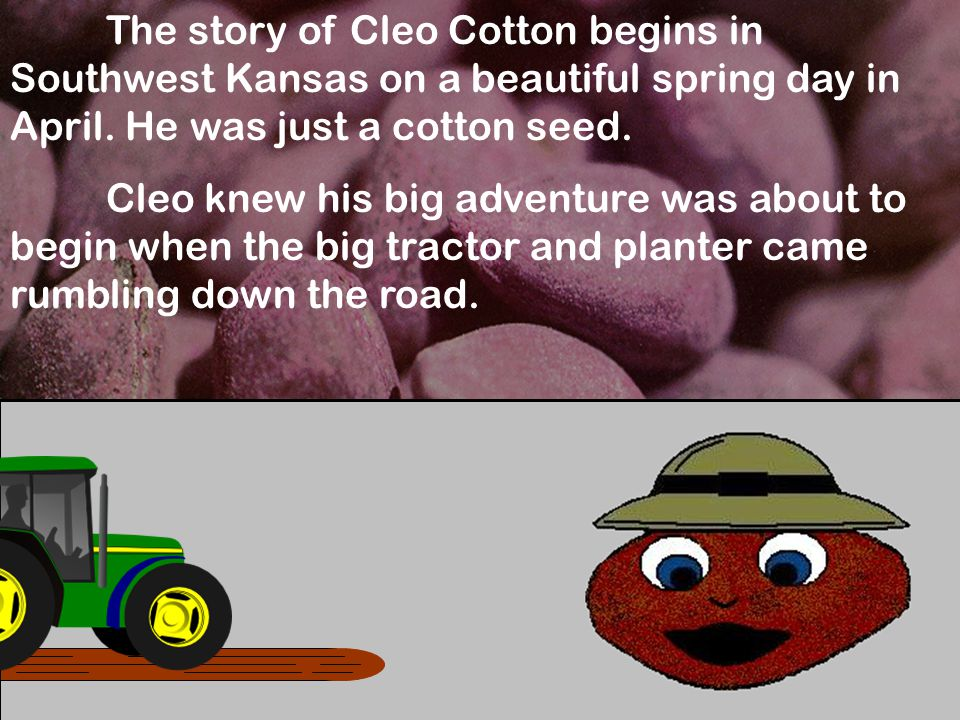 The story of Cleo Cotton begins in Southwest Kansas on a beautiful spring day in April.