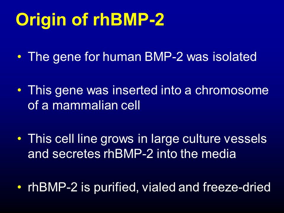 Properties of rhBMP-2 Member of growth and differentiation protein family -Endogenous BMP-2 is active in bone repair and in embryonic development Homodimeric, glycosylated protein that is highly conserved across species Osteoinductive in animals and humans