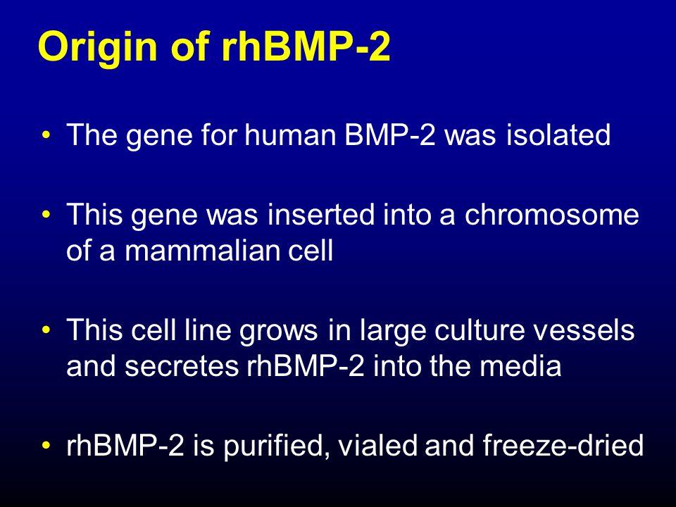Additional tumor studies (FDA consultation) 1.Screen tumor cells for BMP receptor messenger RNA 2.
