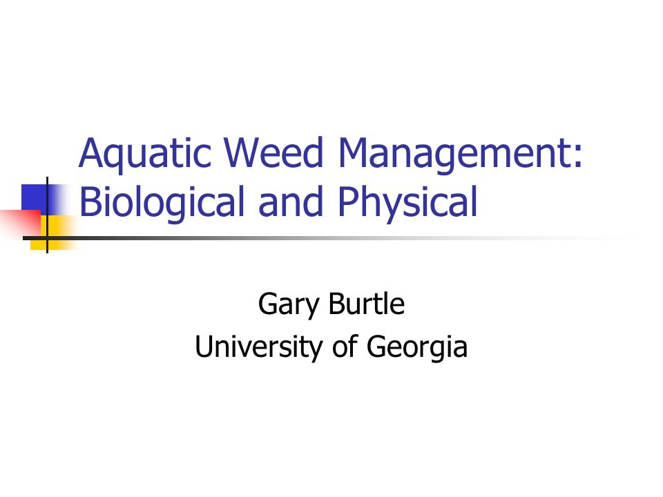 Aquatic Weed Management: Biological and Physical Gary Burtle University of Georgia