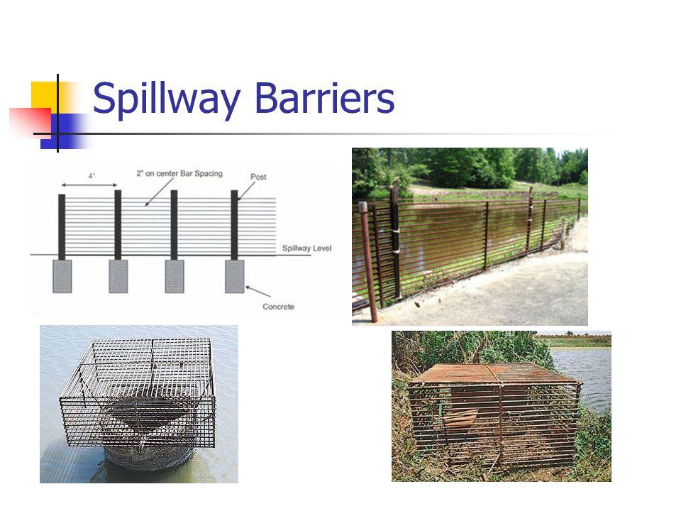Spillway Barriers